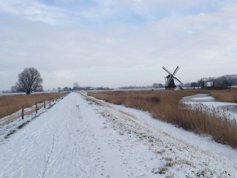 De Noordermolen in Noorddijk.