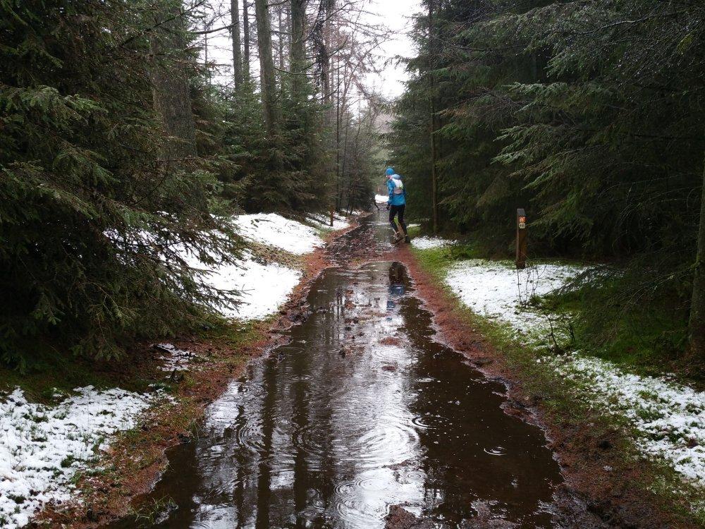 Sommige paden staan zelfs helemaal blank.