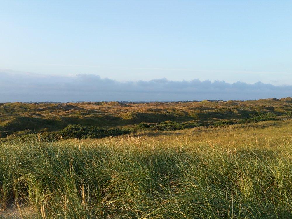 Natuurgebied De Muy.