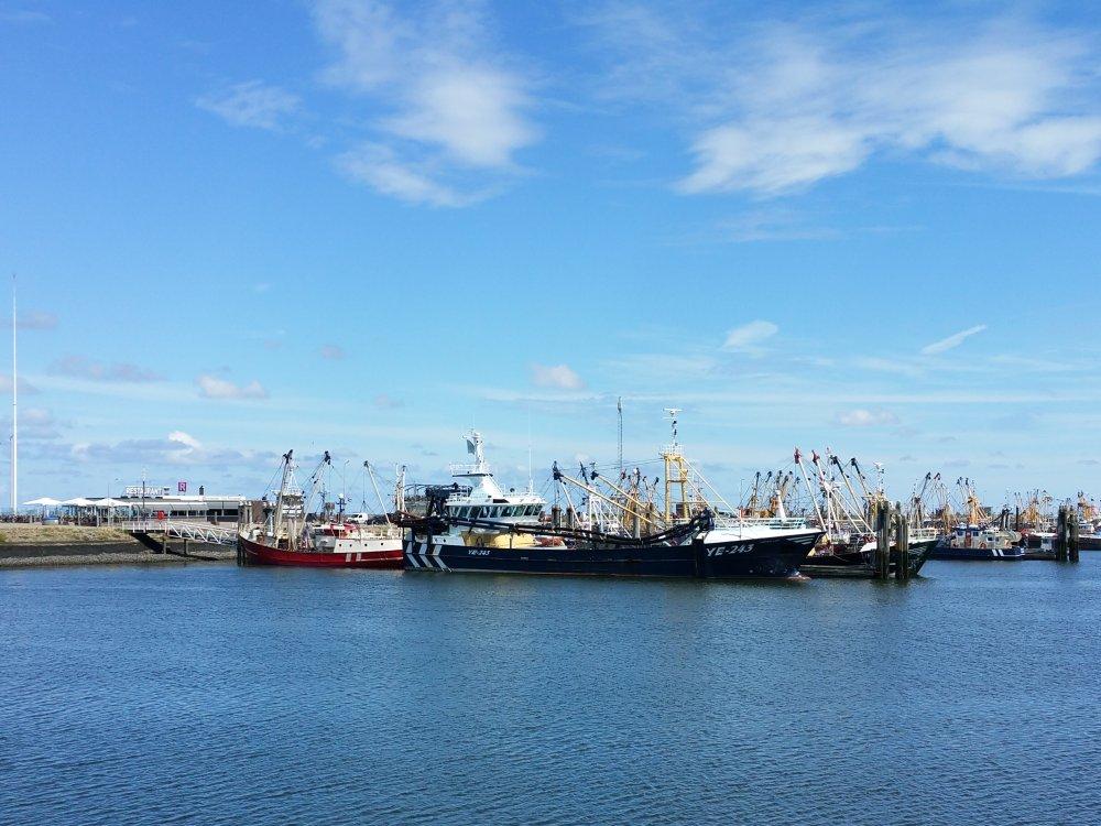 De haven van Lauwersoog.